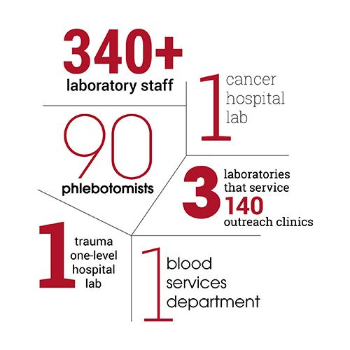 Laboratory infographic
