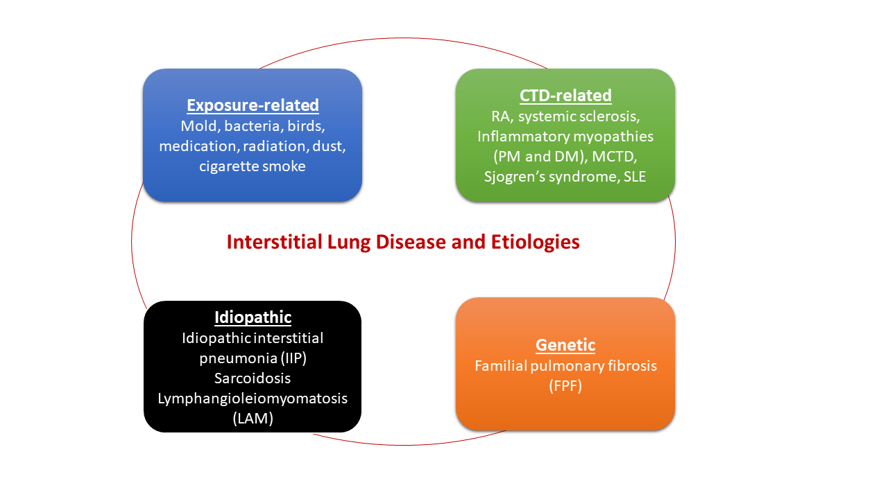 Interstitial Lung Disease Infographic