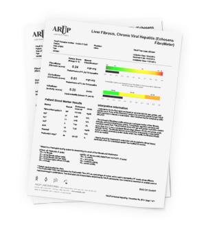 Sample Enhanced Report